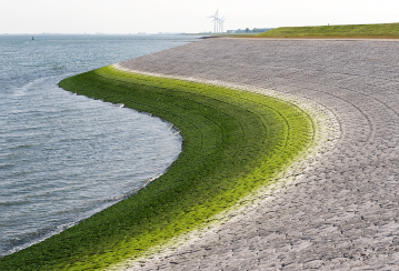 Holcim joins World Ocean Council to scale up action for sustainable marine ecosystems