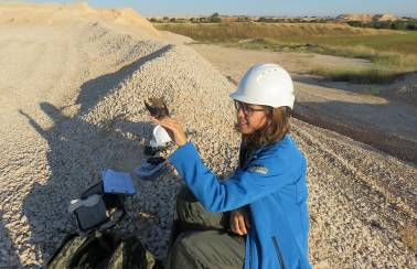 Restoring our quarry ecosystems