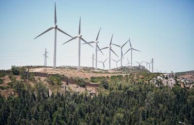 Harnessing the wind in Morocco