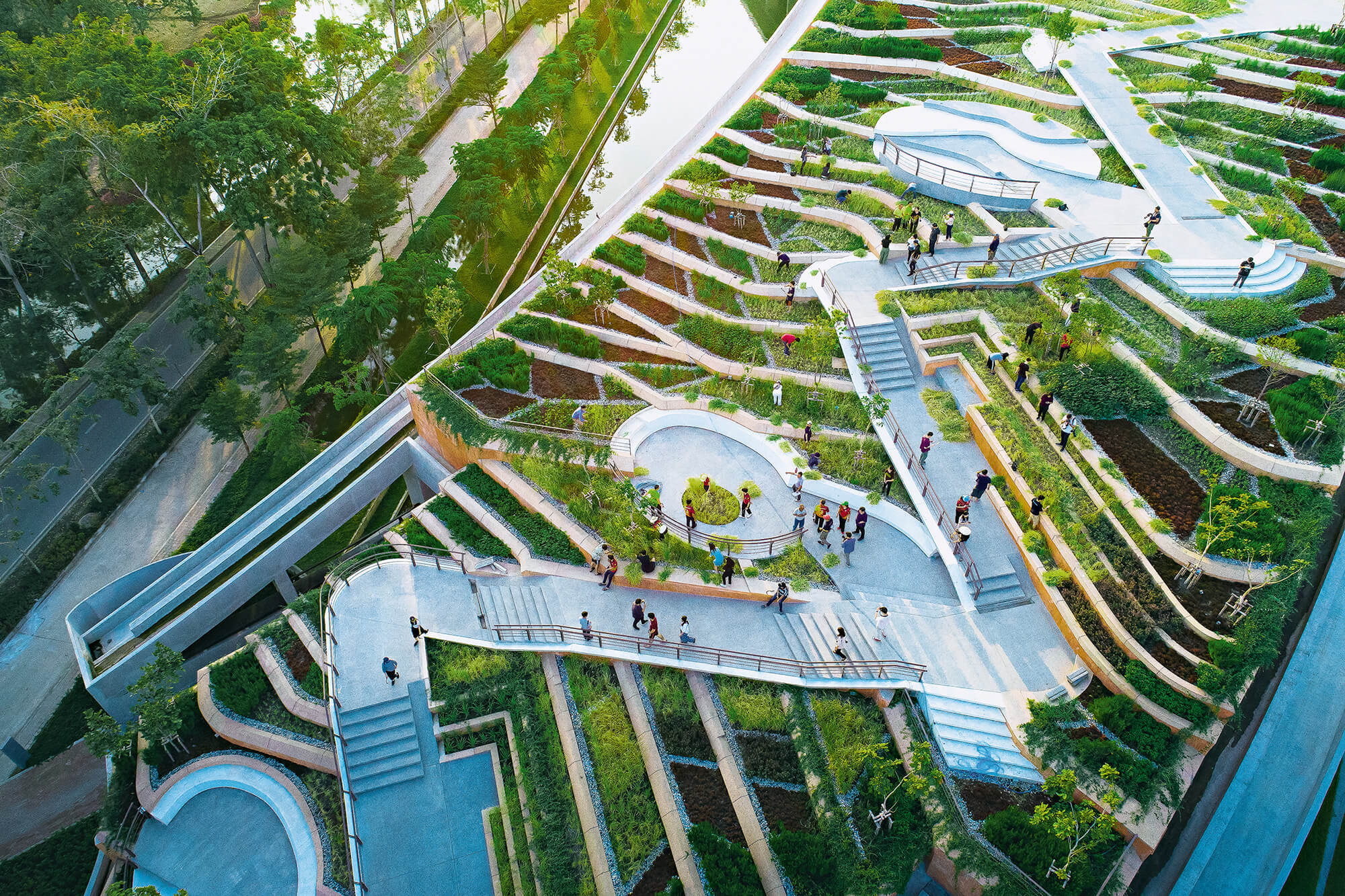 holcim 2021 thammat urban rooftop farm 01